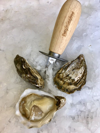 Bruces Beach House Oysters