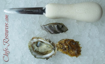 Rock Point Oysters